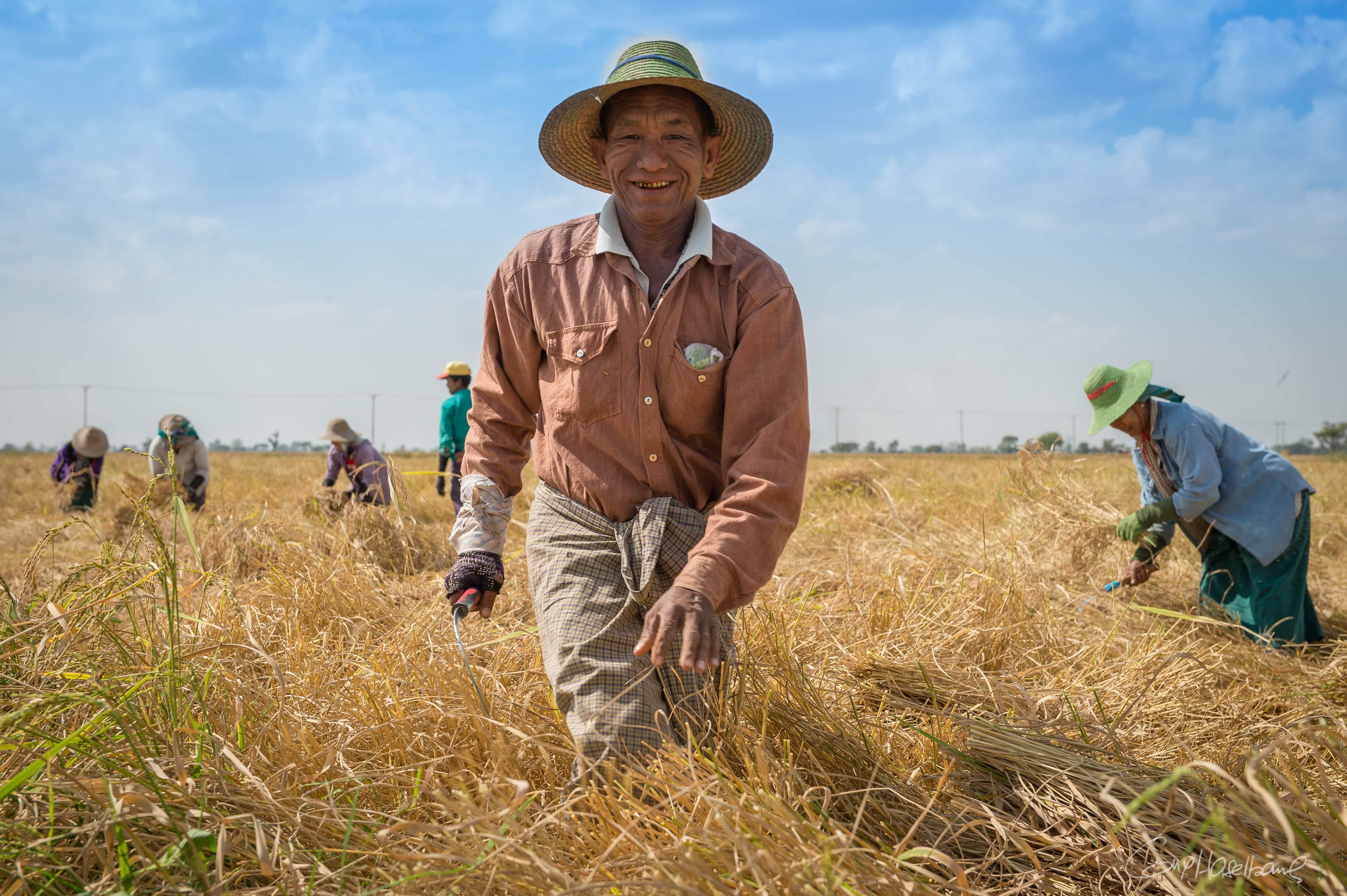 26012016-Birmanie2016-1727