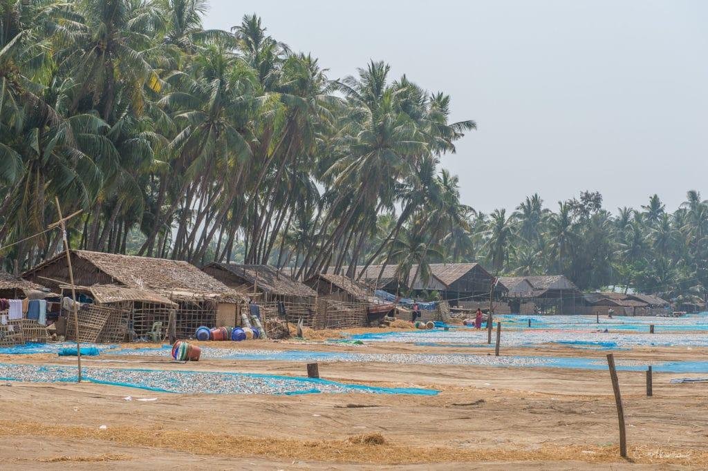 Birmanie16-3592