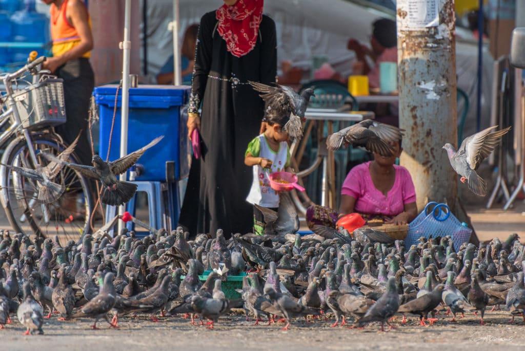 Birmanie16-3740